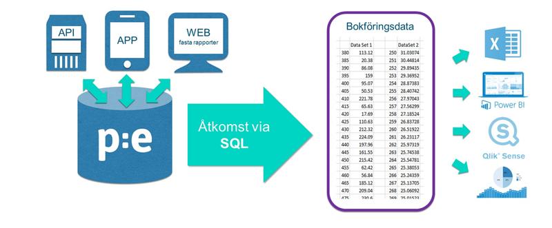 SQL-analytics_infografik