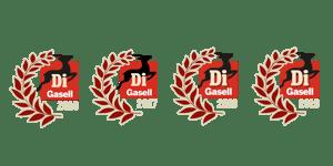 digaseller_4x
