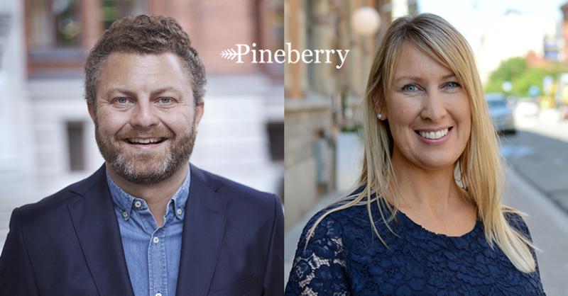 Pineberry story PE Accounting