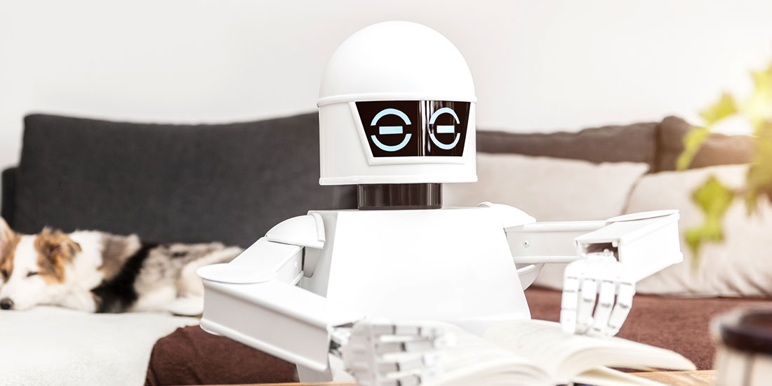revision_robot