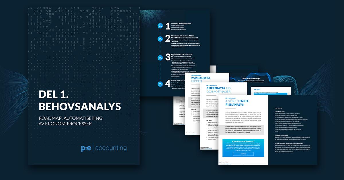 Behovsanalys, Roadmap för automatisering del 1
