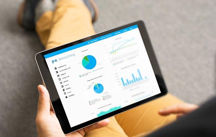 Lön, lönehantering, lönesystem i PE Accounting